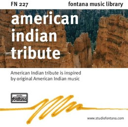 American Indian Tribute